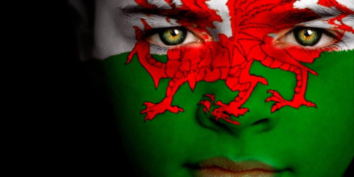 Welsh Flag Face large